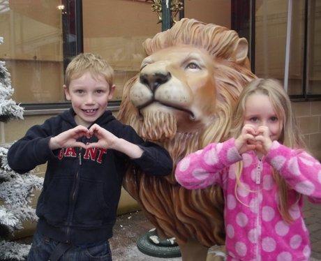 Heart Angels - Cadbury Garden & Leisure Grotto Ope