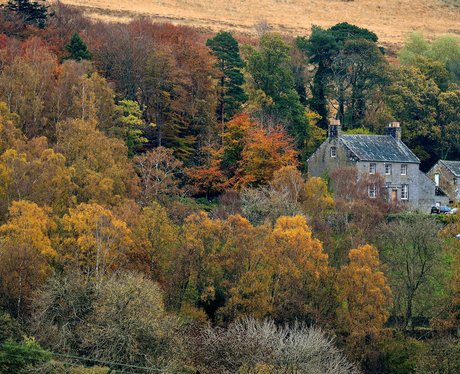 autumnal nature in northumberland