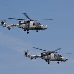 RNAS Yeovilton Air Day - Wildcats