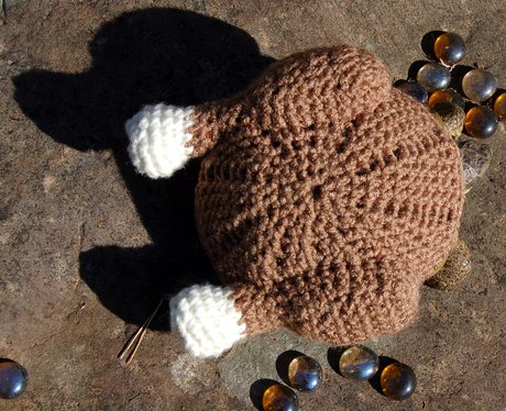 A tortoise in a roast chicken wolley suit