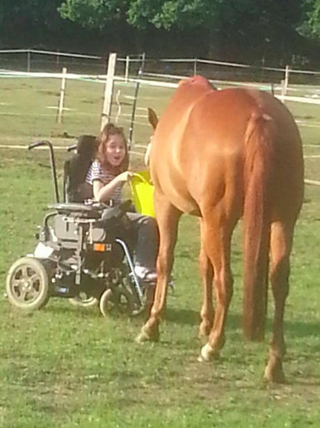 A horse with it's owner
