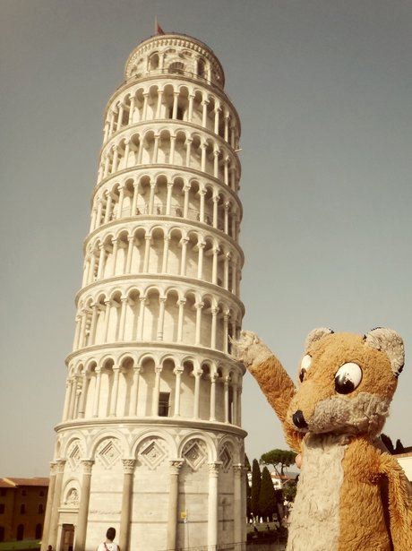A toy fox and the Leaning Tower of Pisa
