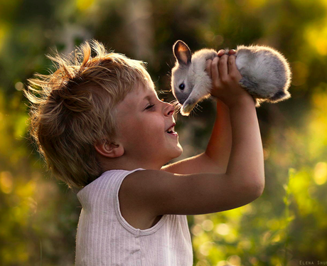 A boy rubbing noses with a baby bunny rabbit