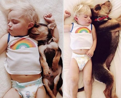toddler sleeping with brown dog