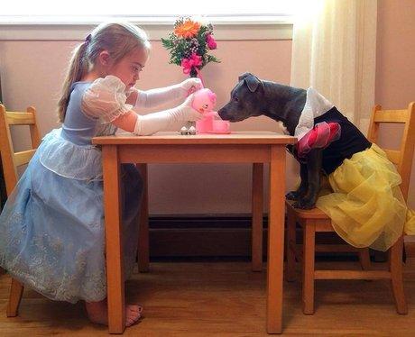 A girl having a tea party with a dog