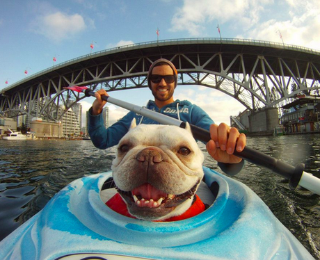 A man kayaking with his dog