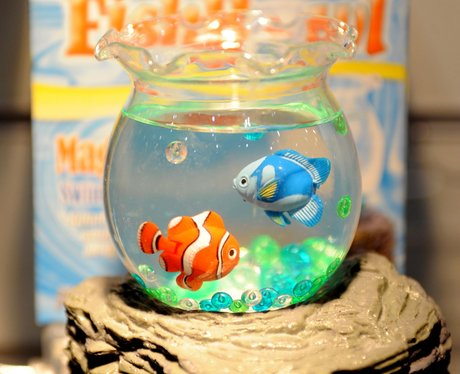 Two toy fish in a fish bowl
