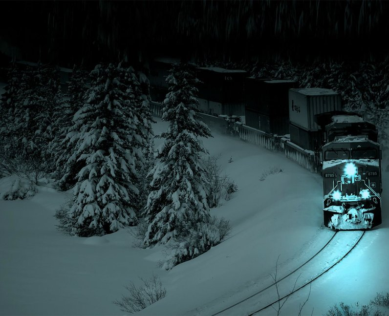 train in snowy forest