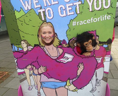 Race for Life - Four Counties