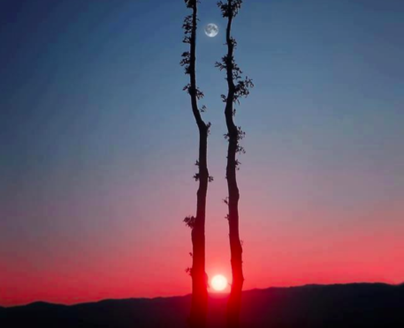 The sun and the moon captured in one photograph