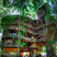 Image 10: A giant treehouse