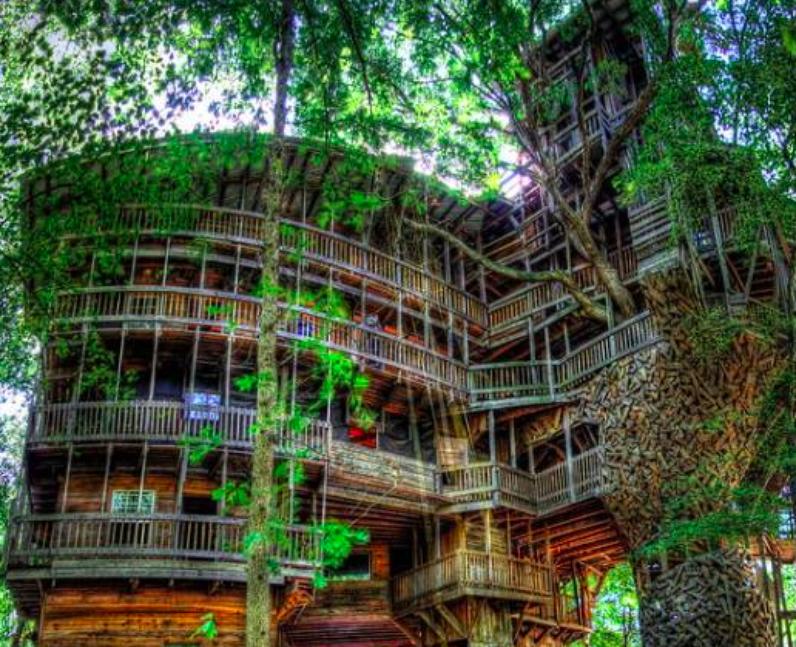 A giant treehouse