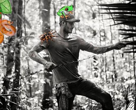 David Beckham in the Amazon
