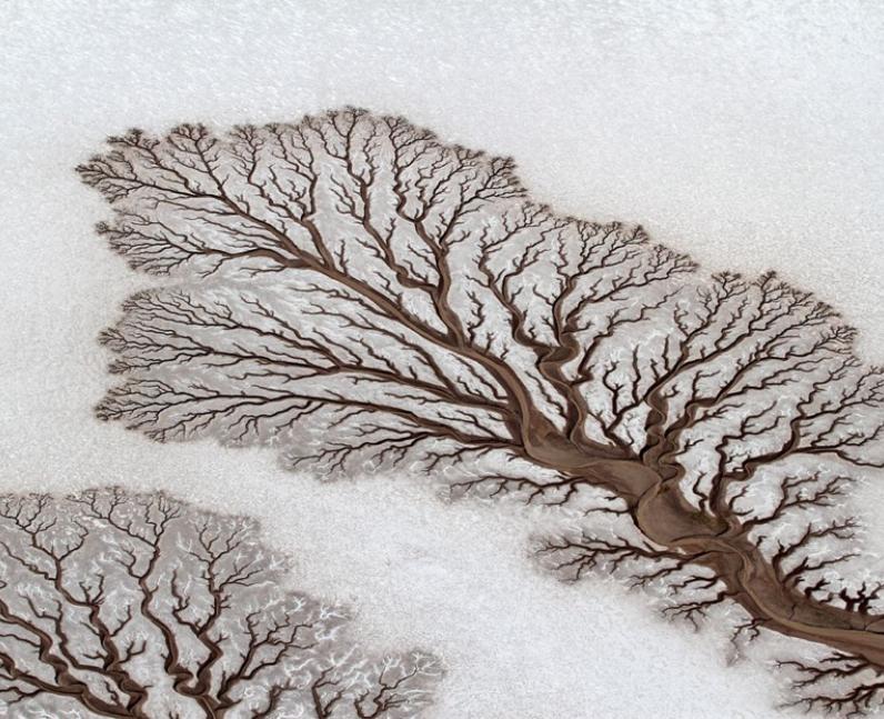 Patterns in the desert.