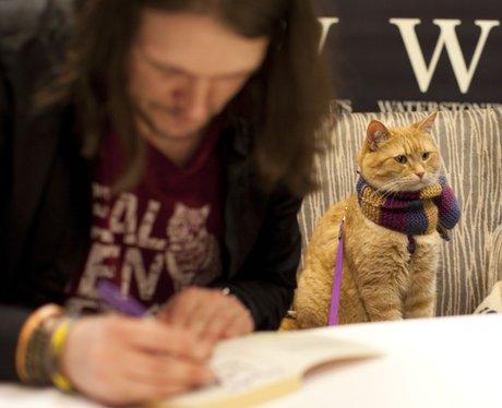 James Bowen and Bob The Cat at a book signing