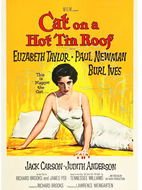 Cat on the Hot Tin Roof Iconic sexy film poster