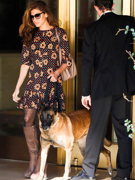 Eva Mendes out with her pet dog