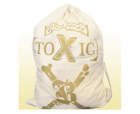 Britney Spears 'Toxic' Laundry Bag