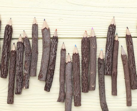 Back To School Tree trunk pencils