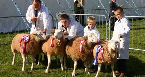 royal berkshire show
