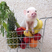 Image 5: Small pigs