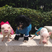 Image 4: Small pigs