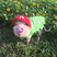 Image 2: Small pigs