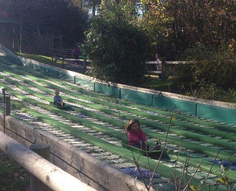 children coming down slides