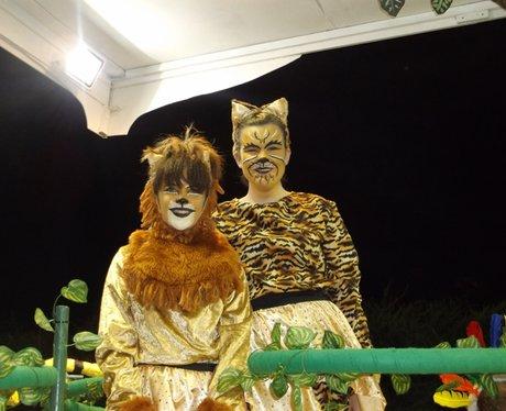Heart Angels: Warminster Carnival (27th October)