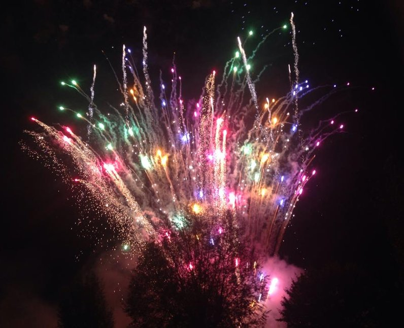 Pictures: Cambridge Fireworks 2014