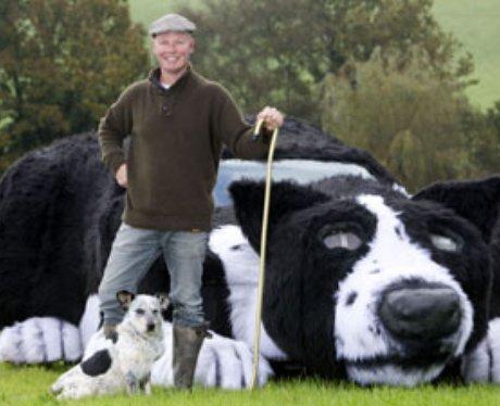 Man with sheepdog car