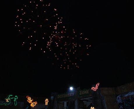 Safari Park Fireworks Day 1: Having a roaring time