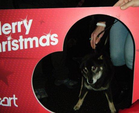 Mr Christmas Light Switch On 2014