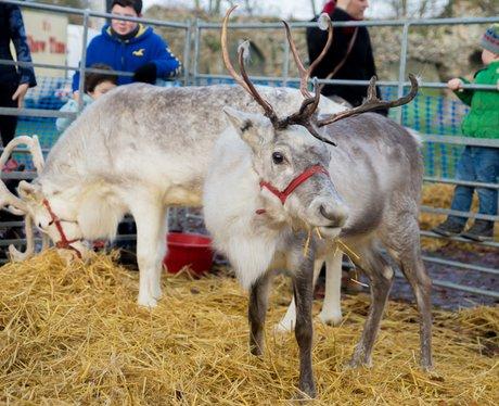 Bury St. Edmunds Christmas Fayre 2014