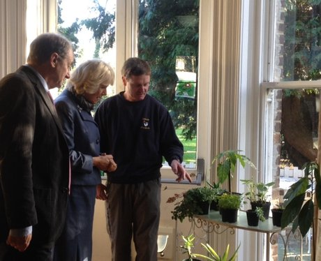 Duchess Of Cornwall In St Albans