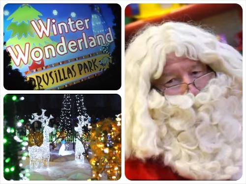 Drusillas Winter Wonderland