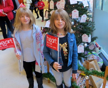 Harpur Centre Wishing Tree 2014