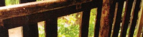 The railings at Chessington