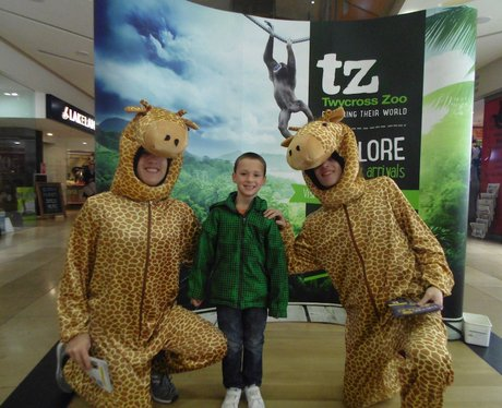 Twycross Zoo at Touchwood Thursday and Friday!