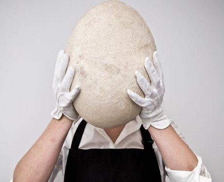 Elephant Bird Egg Auction at Sotheby's