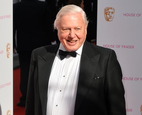 Stars at the BAFTA Awards