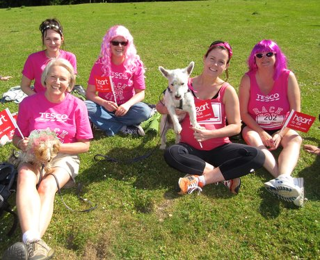 Race For Life 2015 - Welwyn & Hatfield