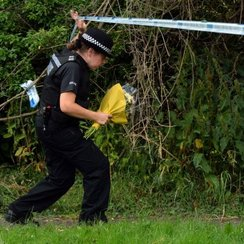 A24 Findon stabbing