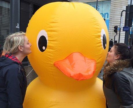 Duck Selfie
