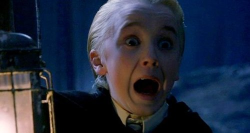 The Hardest Game Of 'Would You Rather' A Harry Potter Fan