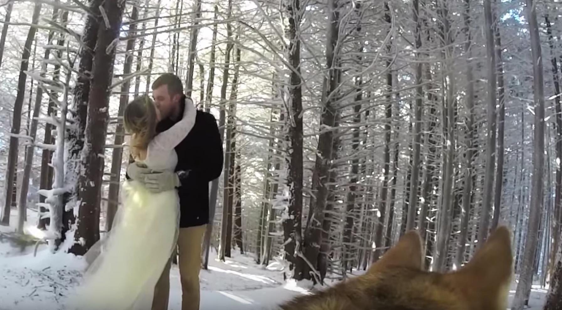 couple let dog film their wedding youtube