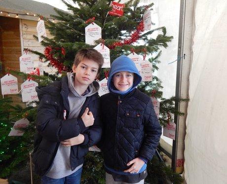 Rainfords Christmas Tree Land