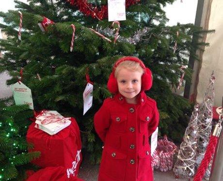 Rainfords Christmas Trees Part Two