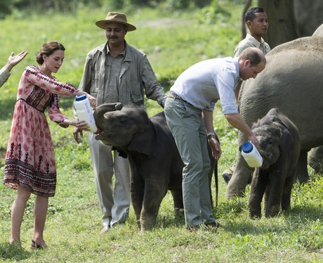 Kate and Prince William in India