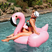Image 2: Kelly Brook in a summer bikini
